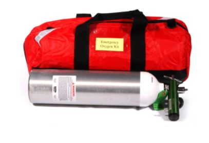 WCB Portable Oxygen Therapy Unit image